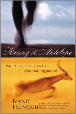 racing-the-antelope
