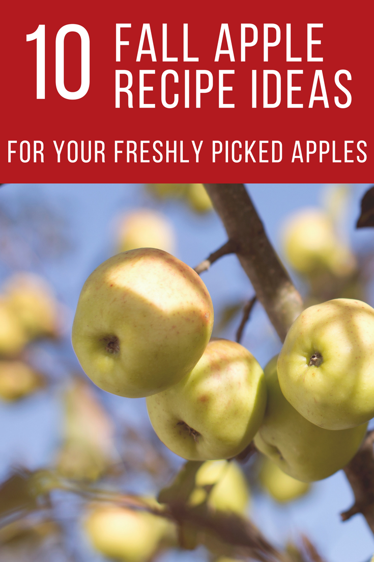 Apple Recipe Ideas.png