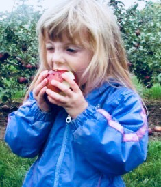 Fabulous Fall Recipe Ideas for Your Freshly Picked Apples