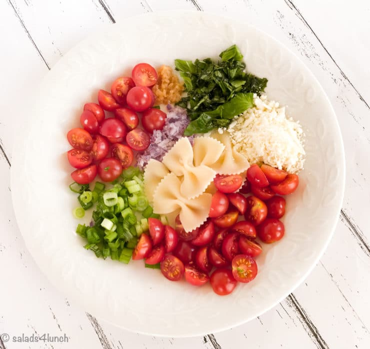 PLate showing ingredients for Feta Bruschetta Pasta Salad including roma tomatoes, green onions, red onion, feta cheese, bow tie pasta and garlic.