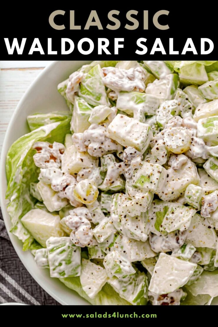 This classic Waldorf Salad is full of fresh, crispy, apples, celery, grapes and walnuts with a creamy mayonnaise dressing served over a bed of lettuce. Serve it as a side dish or appetizer at Christmas or Thanksgiving. You can easily add chicken or turkey to make it a complete meal!